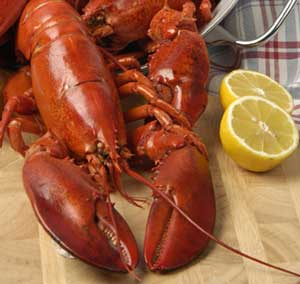 fresh-cooked-lobster