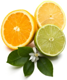 Fruits On Citrus Something Healthy And Delicious Wizardrecipes