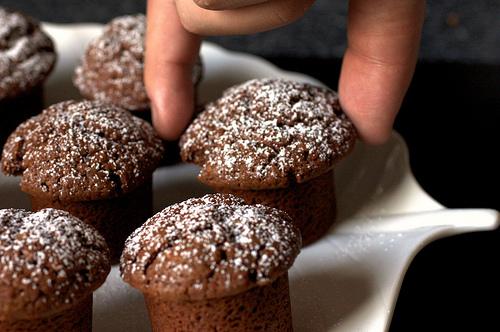 CHOCOLATE YOGURT SNACK CAKES | WizardRecipes