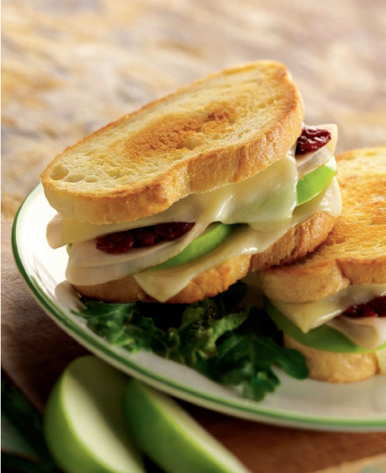 Grilled Turkey and Fontina Sandwiches | WizardRecipes