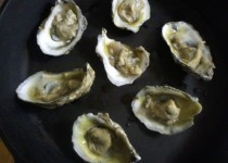 Tidewater Scalloped Oysters