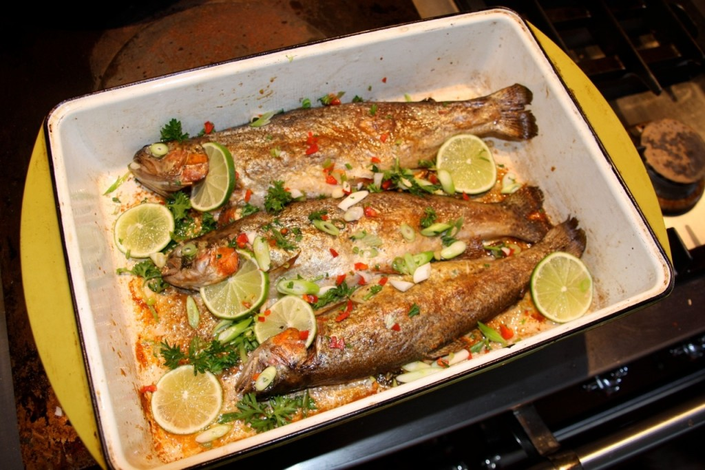 Baked trout wizardrecipes for How to grill fish in oven